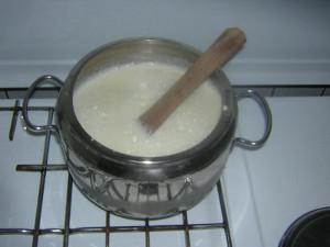 Portate a bollore l'acqua non utilizzata per frullare i semi (1,5 litri) e versateci il composto. Cuocete per 10 minuti
