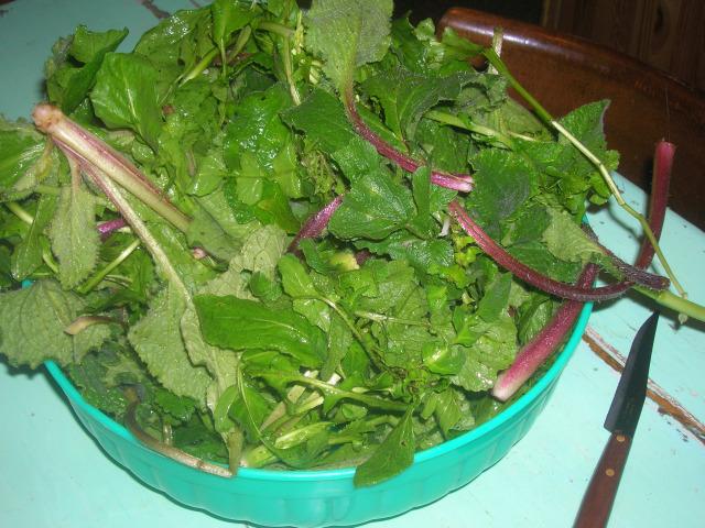 verdura regalo di Augusta p