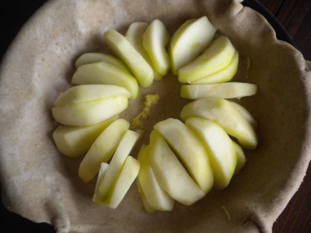 apples 026