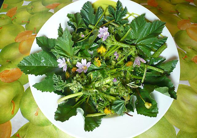 Insalata campagnola con fiorellini selvatici